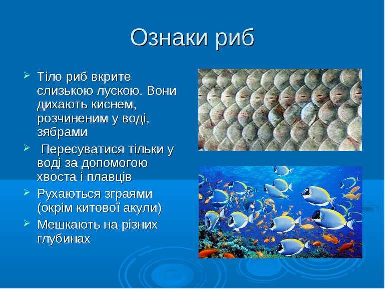 Ознаки риб Тіло риб вкрите слизькою лускою. Вони дихають киснем, розчиненим у...