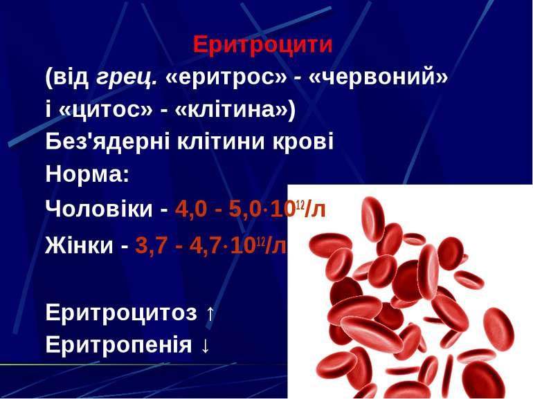 Еритроцити (від грец. «еритрос» - «червоний» і «цитос» - «клітина») Без'ядерн...
