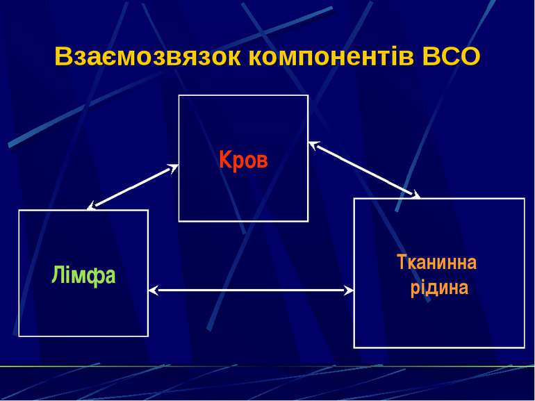 Взаємозвязок компонентів ВСО