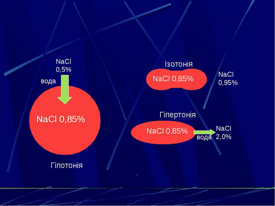 Ізотонія Гіпертонія Гіпотонія . NaCl 0,85% NaCl 0,95% NaCl 2,0% NaCl 0,5% NaC...