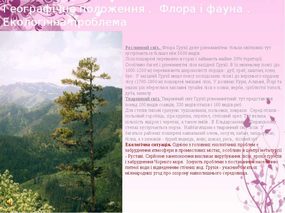 Рослинний світ. Флора Грузії дуже різноманітна: тільки квіткових тут зустріча...