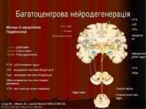 Багатоцентрова нейродегенерація Lang AE, Obeso JA. Lancet Neurol 2004;3:309-1...