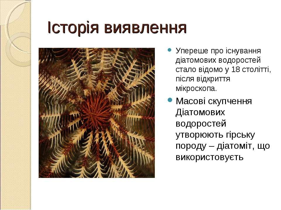 Історія виявлення Упереше про існування діатомових водоростей стало відомо у ...