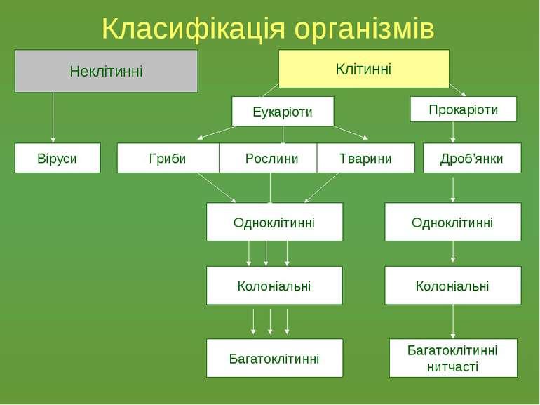 Класифікація організмів Неклітинні Клітинні Віруси Прокаріоти Еукаріоти Росли...