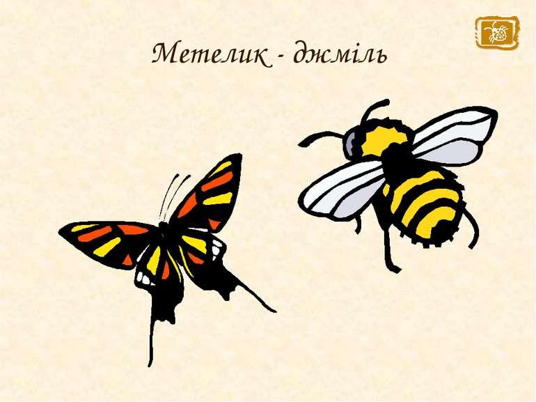 Метелик - джміль