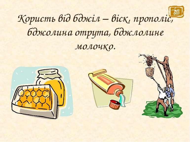 Користь від бджіл – віск, прополіс, бджолина отрута, бджлолине молочко.
