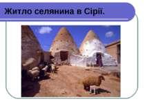 Житло селянина в Сірії.