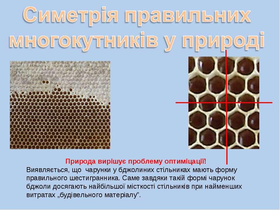 Природа вирішує проблему оптиміцації! Виявляється, що чарунки у бджолиних сті...