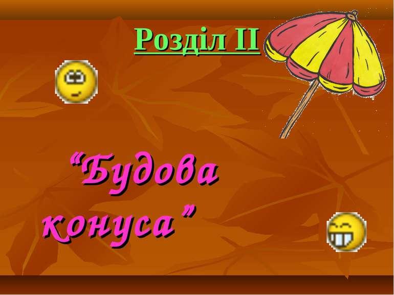 """""""Будова конуса"""""""