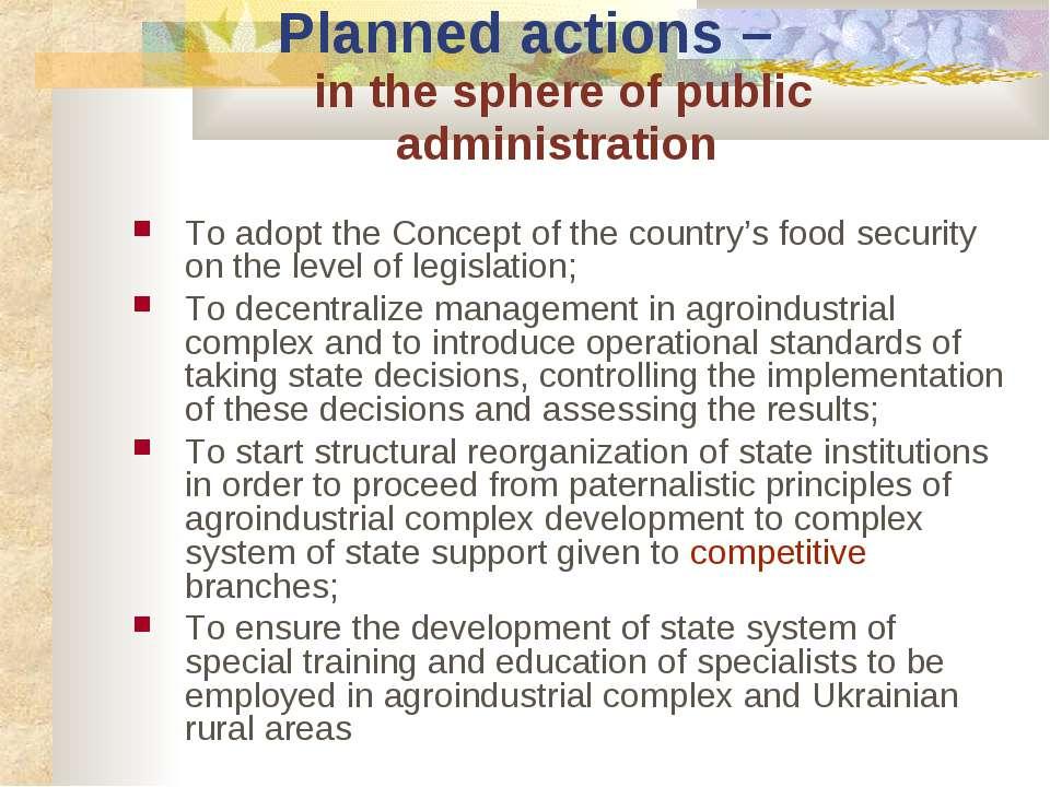 Planned actions – in the sphere of public administration To adopt the Concept...