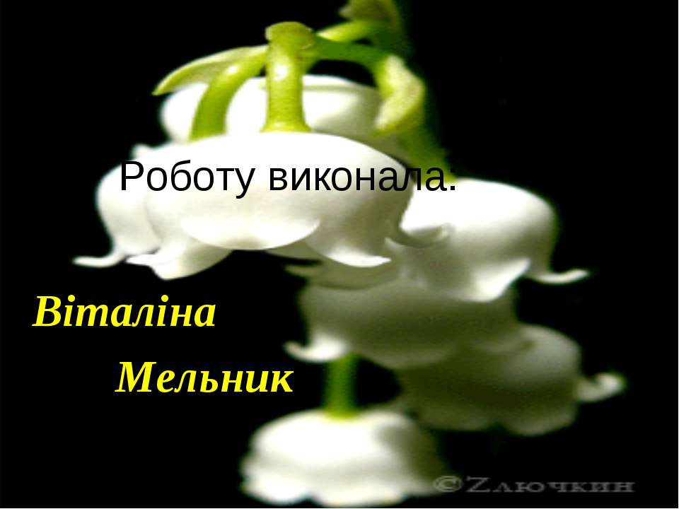Роботу виконала: Віталіна Мельник