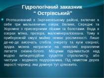 """Гідрологічний заказник """" Острівський"""" Розташований в Зарічненському районі, в..."""