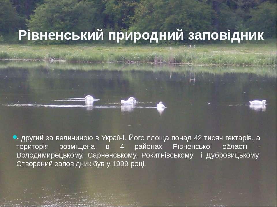 Рівненський природний заповідник - другий за величиною в Україні. Його площа ...