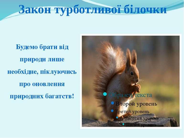 Будемо брати від природи лише необхідне, піклуючись про оновлення природних б...