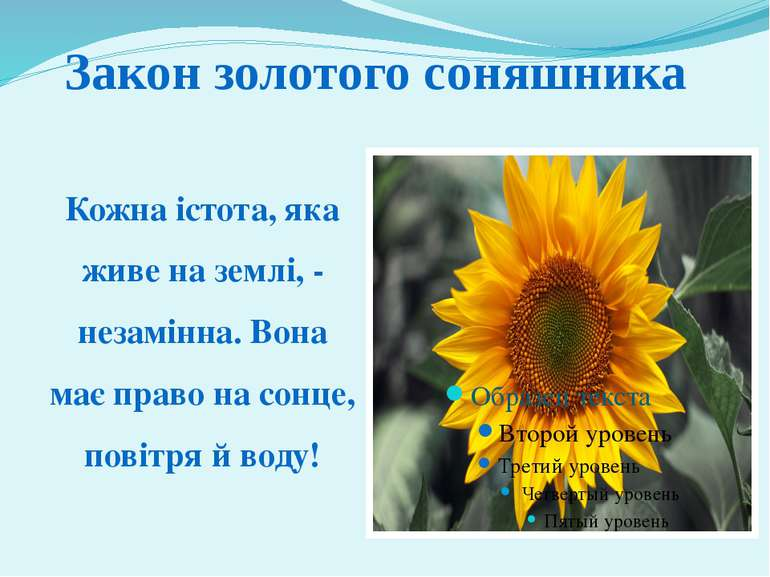 Кожна істота, яка живе на землі, - незамінна. Вона має право на сонце, повітр...