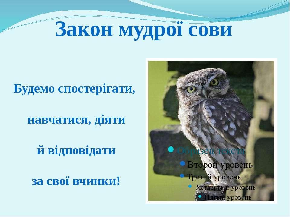 Закон мудрої сови Будемо спостерігати, навчатися, діяти й відповідати за свої...