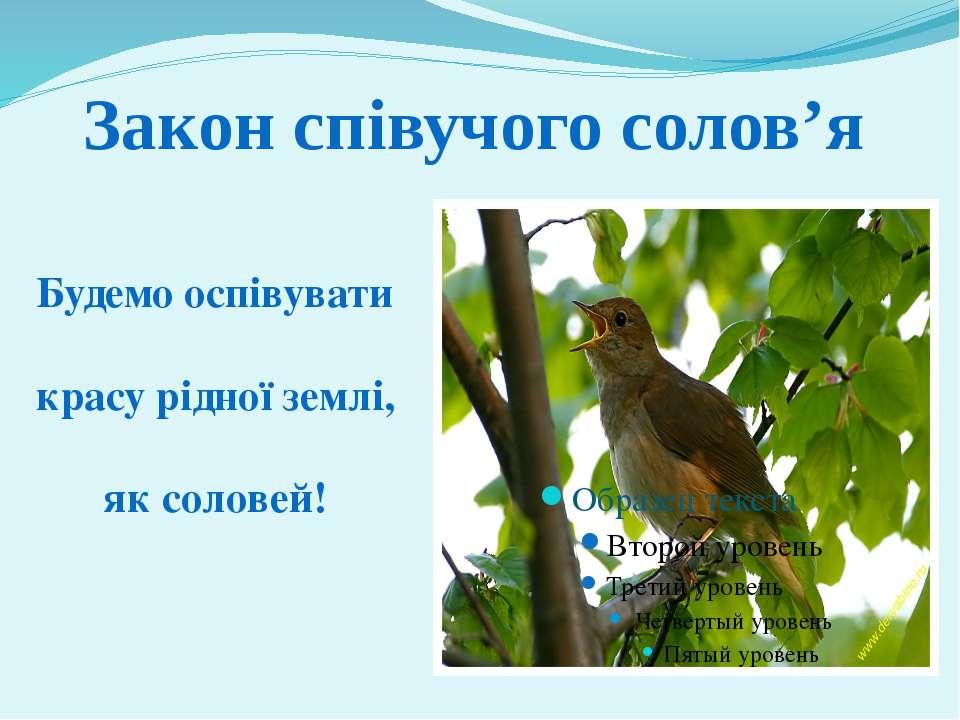 Будемо оспівувати красу рідної землі, як соловей! Закон співучого солов'я Мел...