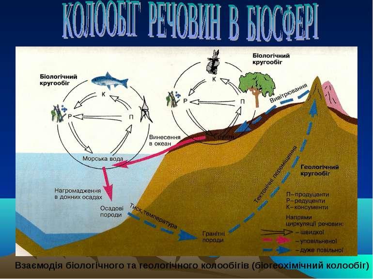 Взаємодія біологічного та геологічного колообігів (біогеохімічний колообіг)