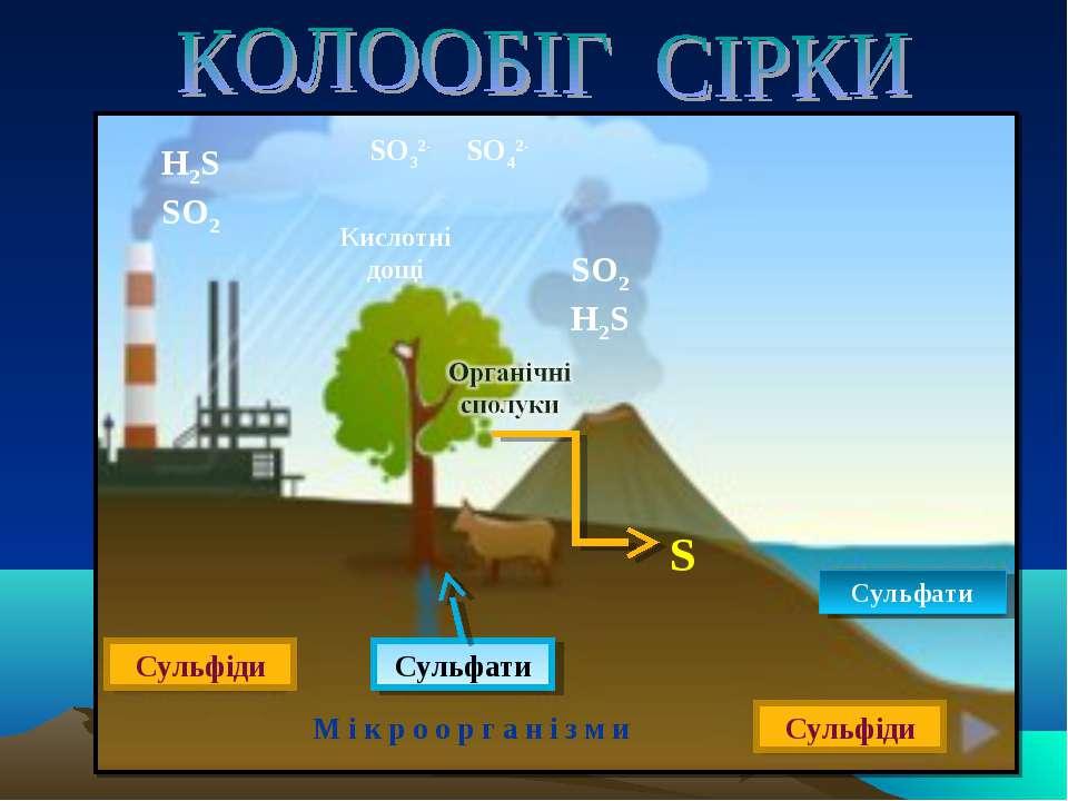 Сульфіди Сульфати Сульфати Сульфіди SO2 H2S H2S SO2 М і к р о о р г а н і з м...