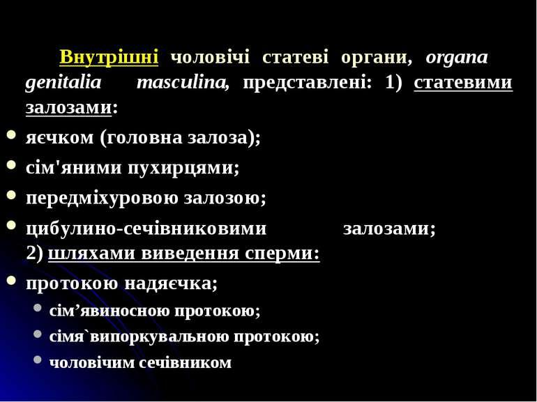 Внутрішні чоловічі статеві органи, organa genitalia masculina, представлені: ...