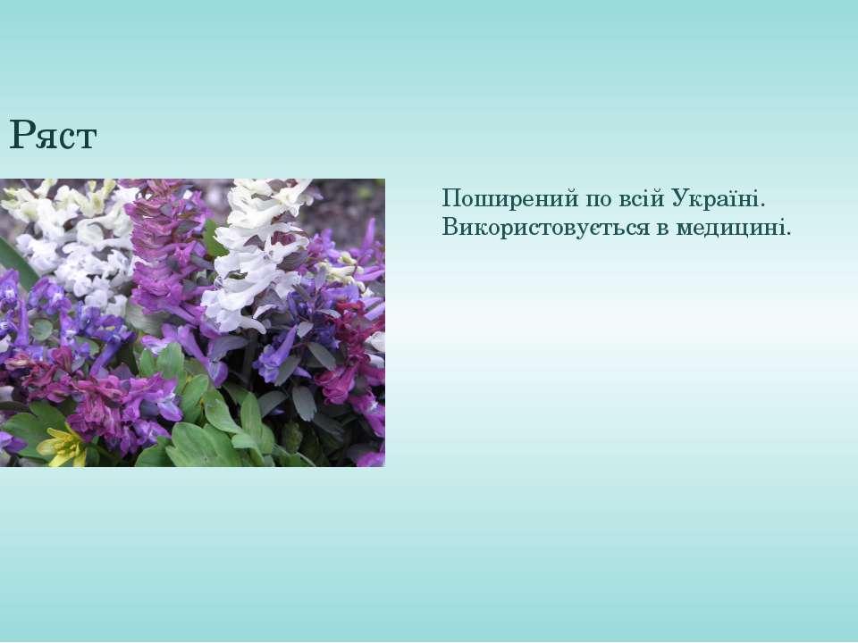 Ряст Поширений по всій Україні. Використовується в медицині.