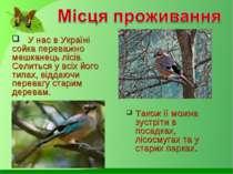 У нас в Україні сойка переважно мешканець лісів. Селиться у всіх його типах, ...