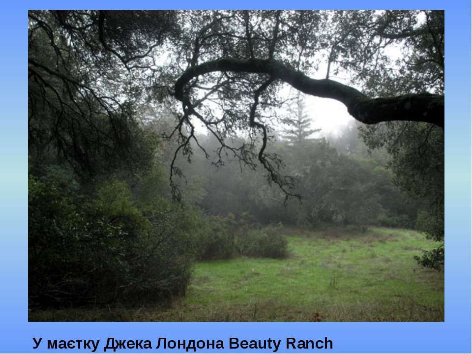 У маєтку Джека Лондона Beauty Ranch