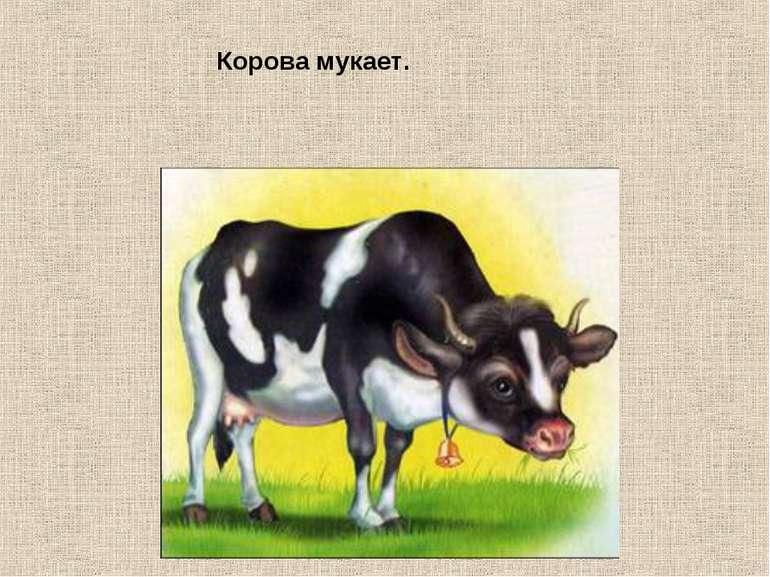 Корова мукает.