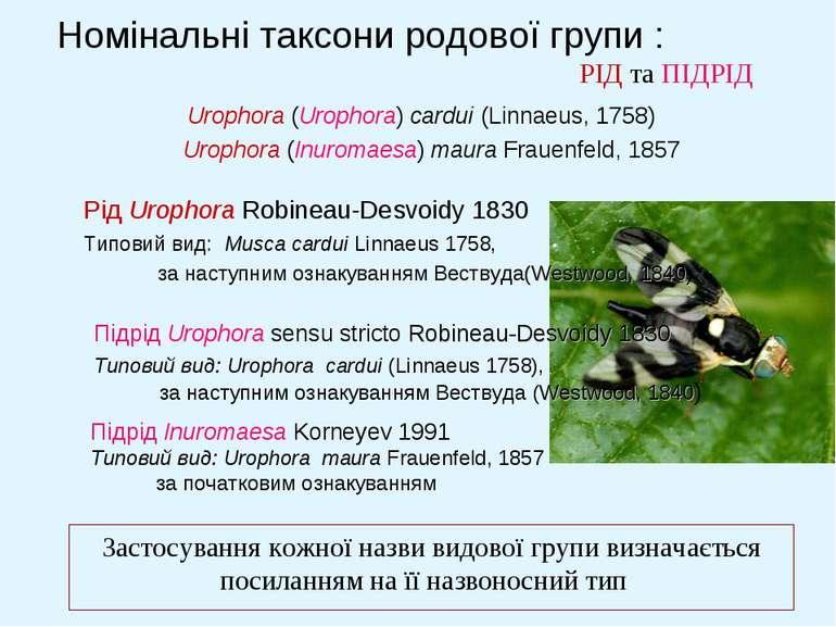 Номінальні таксони родової групи : РІД та ПІДРІД Застосування кожної назви ви...