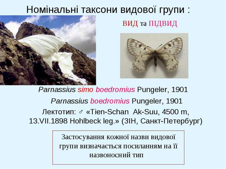 Номінальні таксони видової групи : ВИД та ПІДВИД Застосування кожної назви ви...