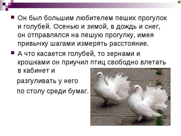 Он был большим любителем пеших прогулок и голубей. Осенью и зимой, в дождь и ...