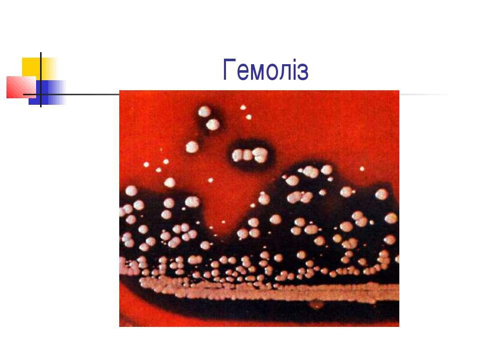 Гемоліз
