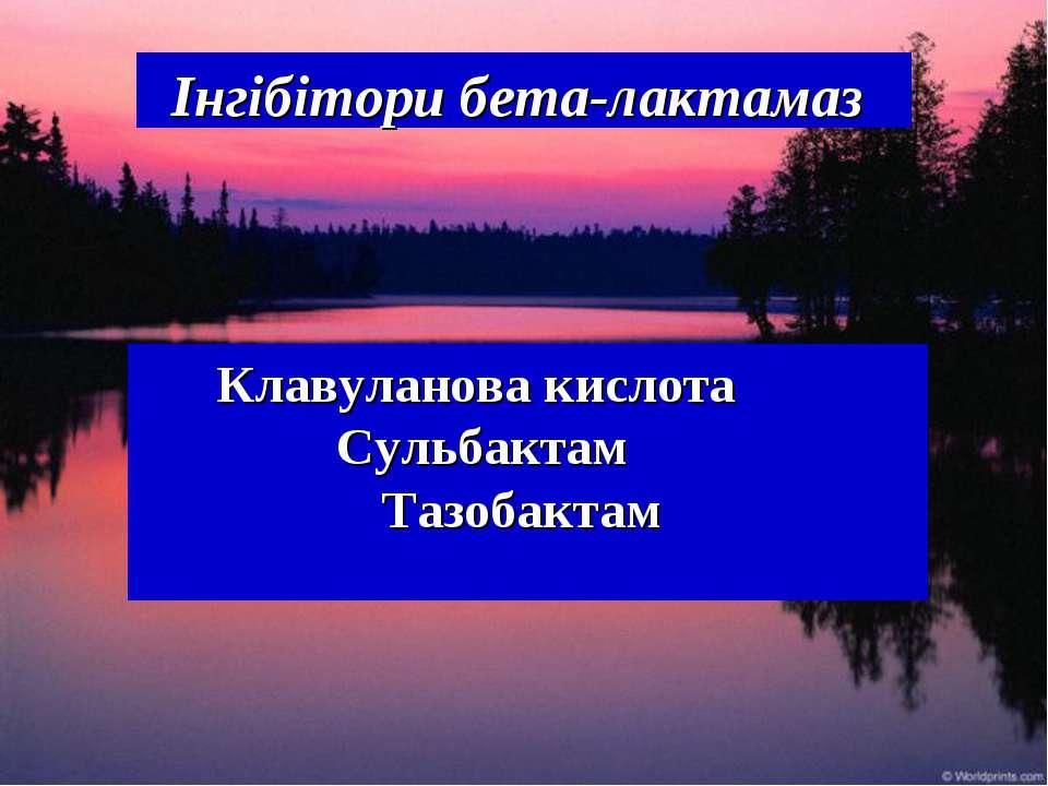 Інгібітори бета-лактамаз Клавуланова кислота Сульбактам Тазобактам