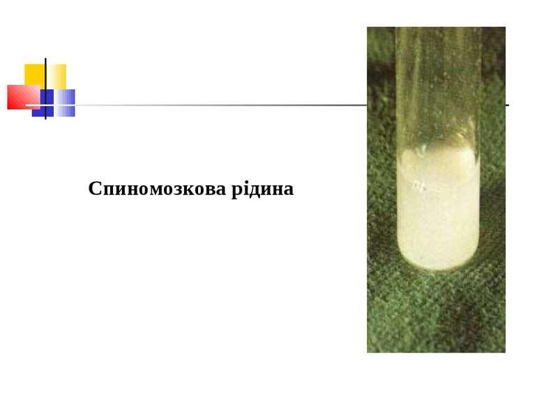 Спиномозкова рідина