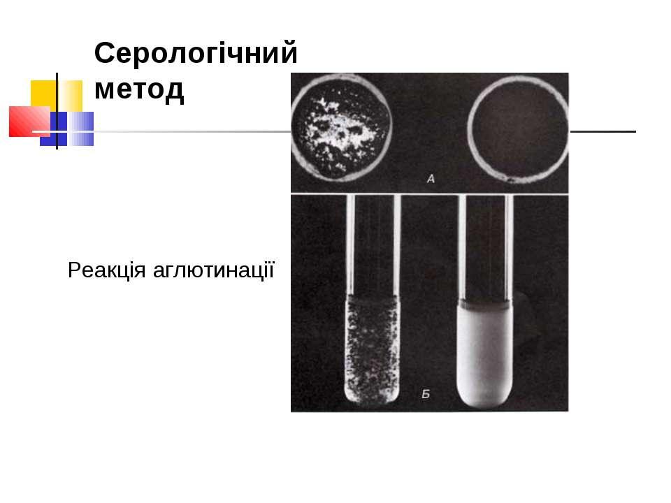 Реакція аглютинації Серологічний метод