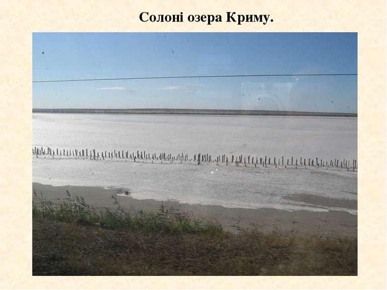 Солоні озера Криму.