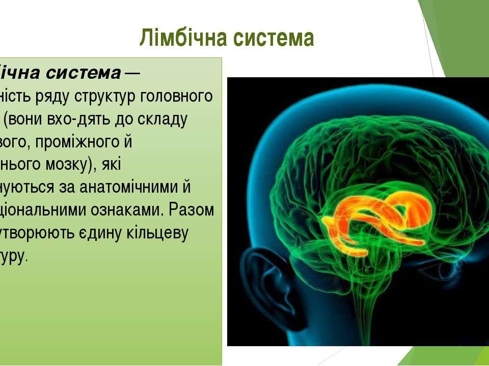 Лімбічна система Лімбічна система — сукупність ряду структур головного мозку ...