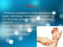 Пульс Ритмічні коливання стінки артеріальних судин, викликані тиском крові в ...