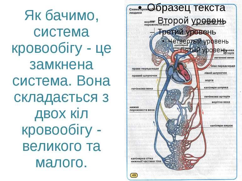 Як бачимо, система кровообігу - це замкнена система. Вона складається з двох ...