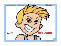 teeth der Zahn