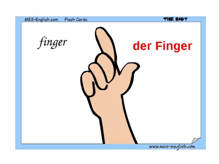 finger der Finger