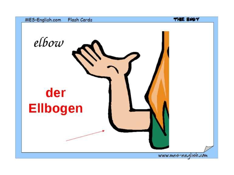 elbow der Ellbogen