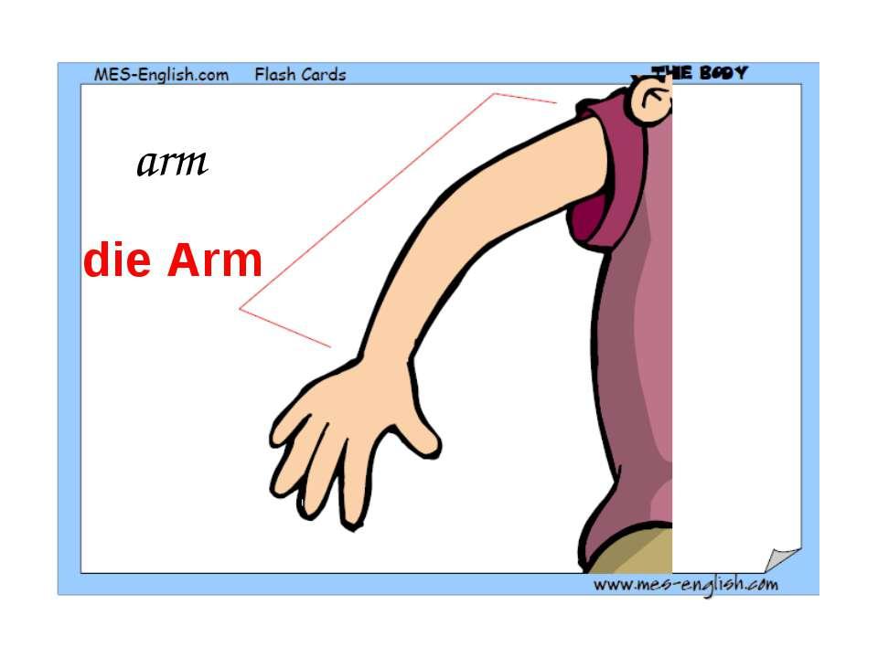 arm die Arm