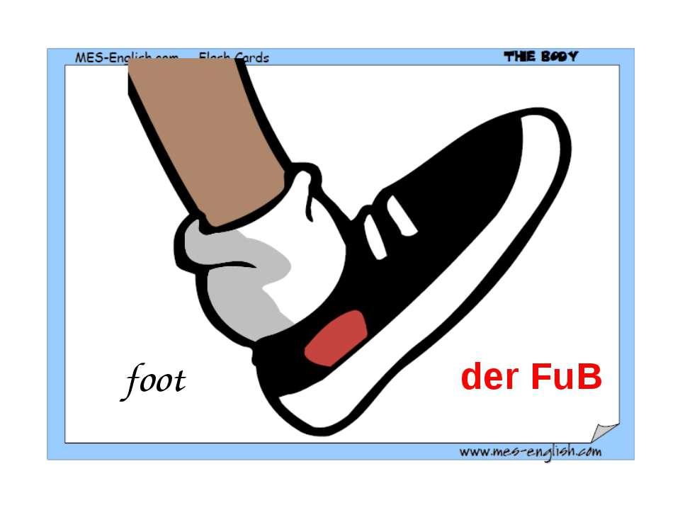 foot der FuB