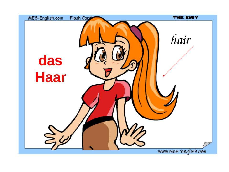 hair das Haar