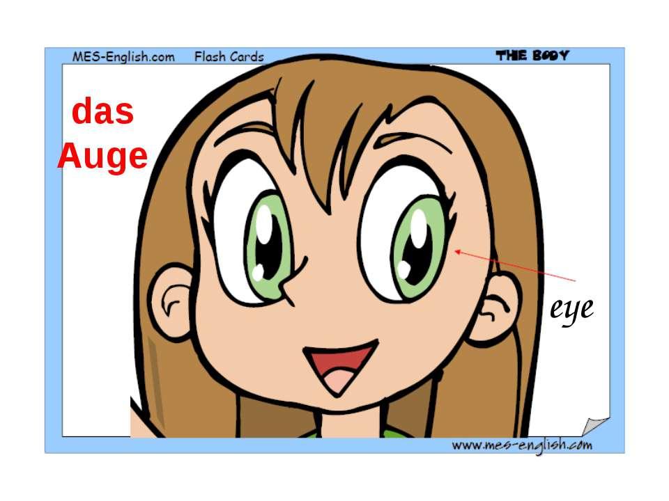 eye das Auge