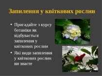 Запилення у квіткових рослин Пригадайте з курсу ботаніки як відбувається запи...