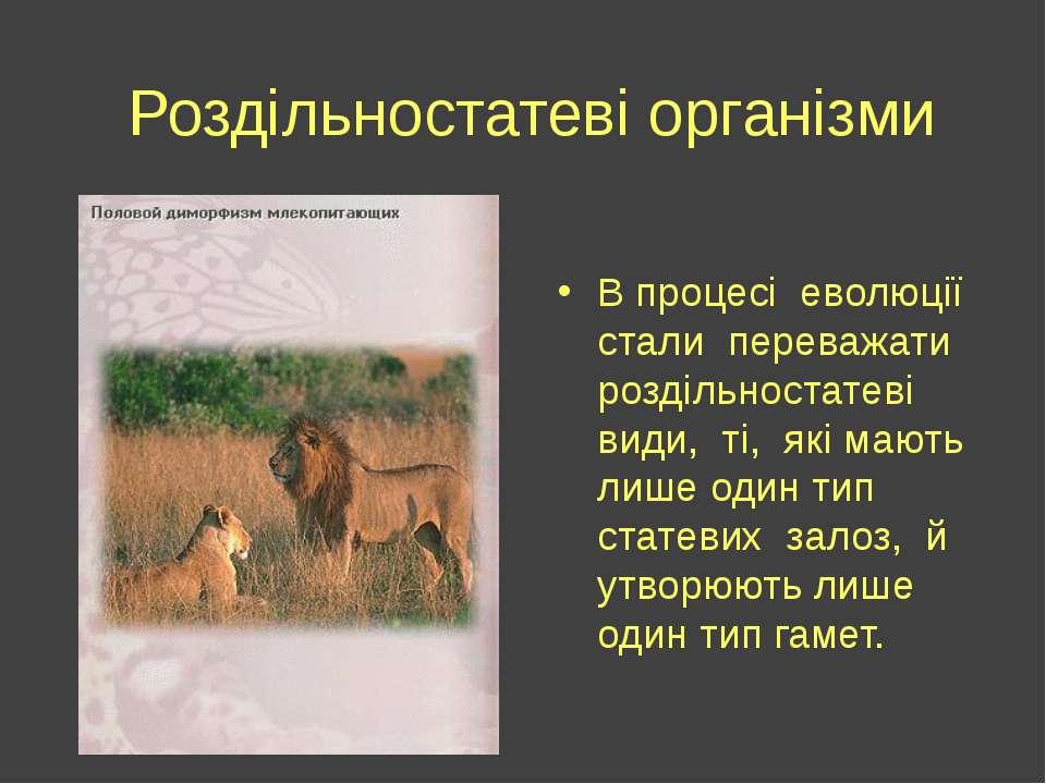 Роздільностатеві організми В процесі еволюції стали переважати роздільностате...