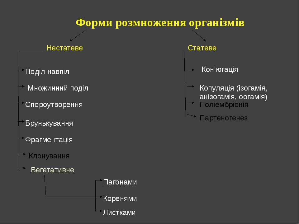 Форми розмноження організмів Нестатеве Статеве Поділ навпіл Множинний поділ С...