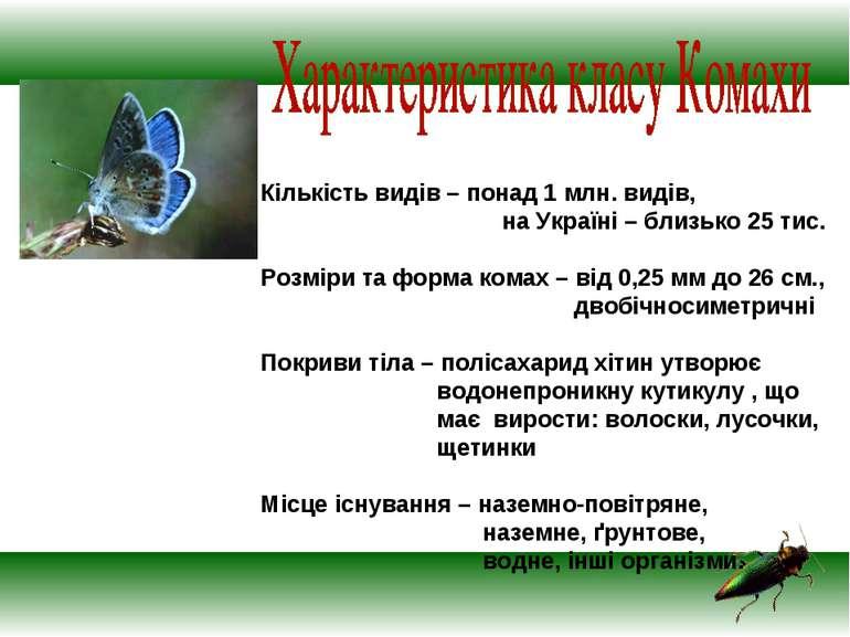 Кількість видів – понад 1 млн. видів, на Україні – близько 25 тис. Розміри та...